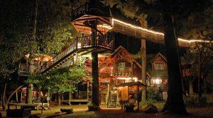 rumah pohon terbaik